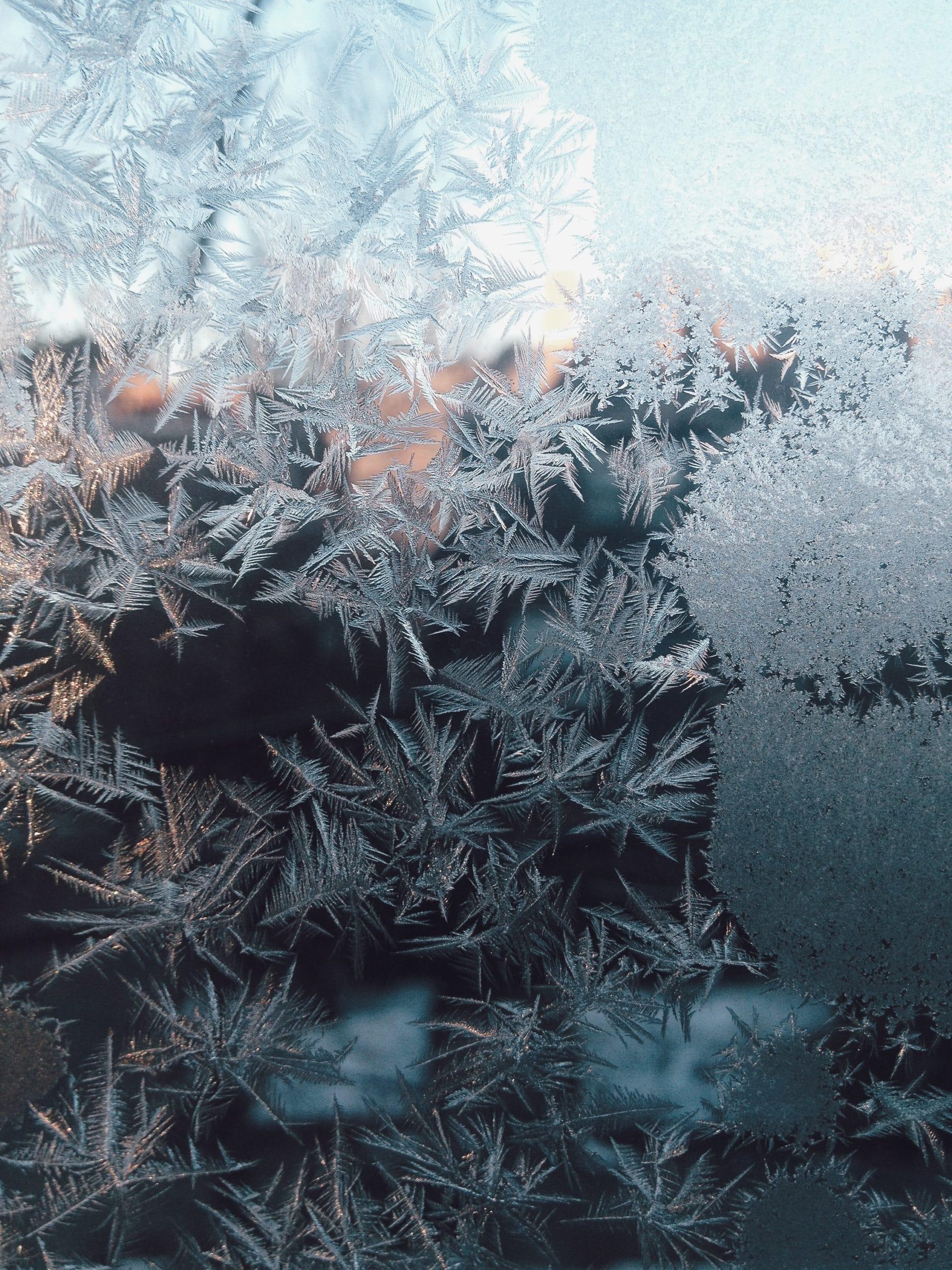 stabilisation tartrique par le froid